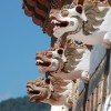 Bhutan Exotic Adventure Travel Gallery